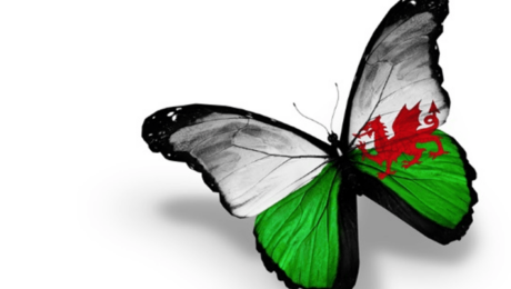 learning-possibilities-wins-wales-contract